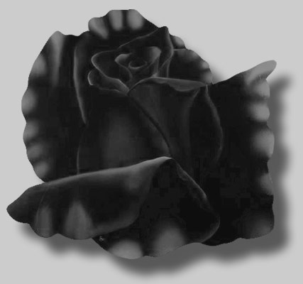 Paintings of Roses: Rosa Mistica